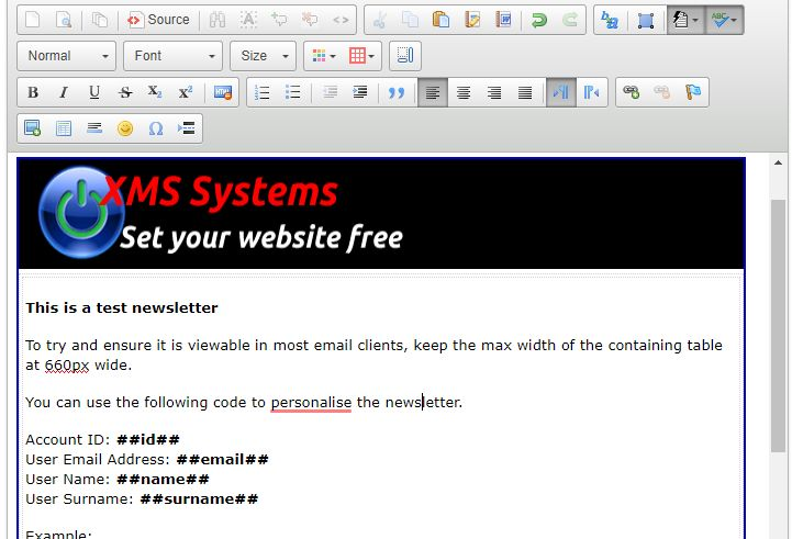 Basic XMS Systems newsletter template