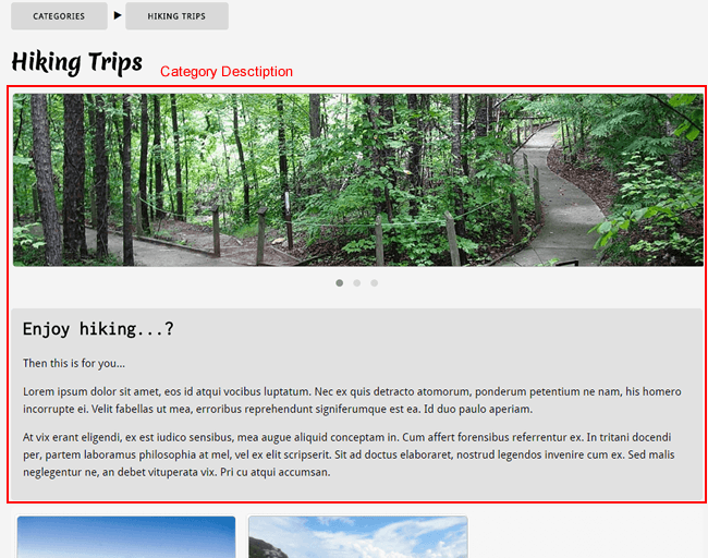 Tours category not using category Image