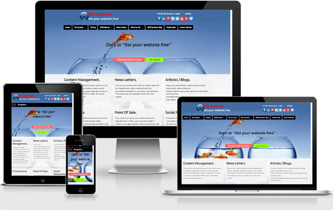 Responsive XMS Systems Based website